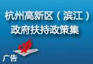 杭州高新区(滨江)政府扶持政策集