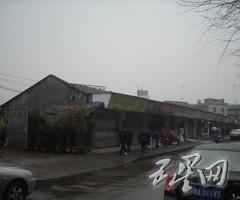 钱江花鸟市场