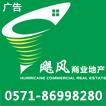 杭州飓风房地产代理有限公司